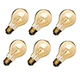 40W Edison Style Light Bulbs A19 23 Filament Warm Light ETL Listed 6 Packs