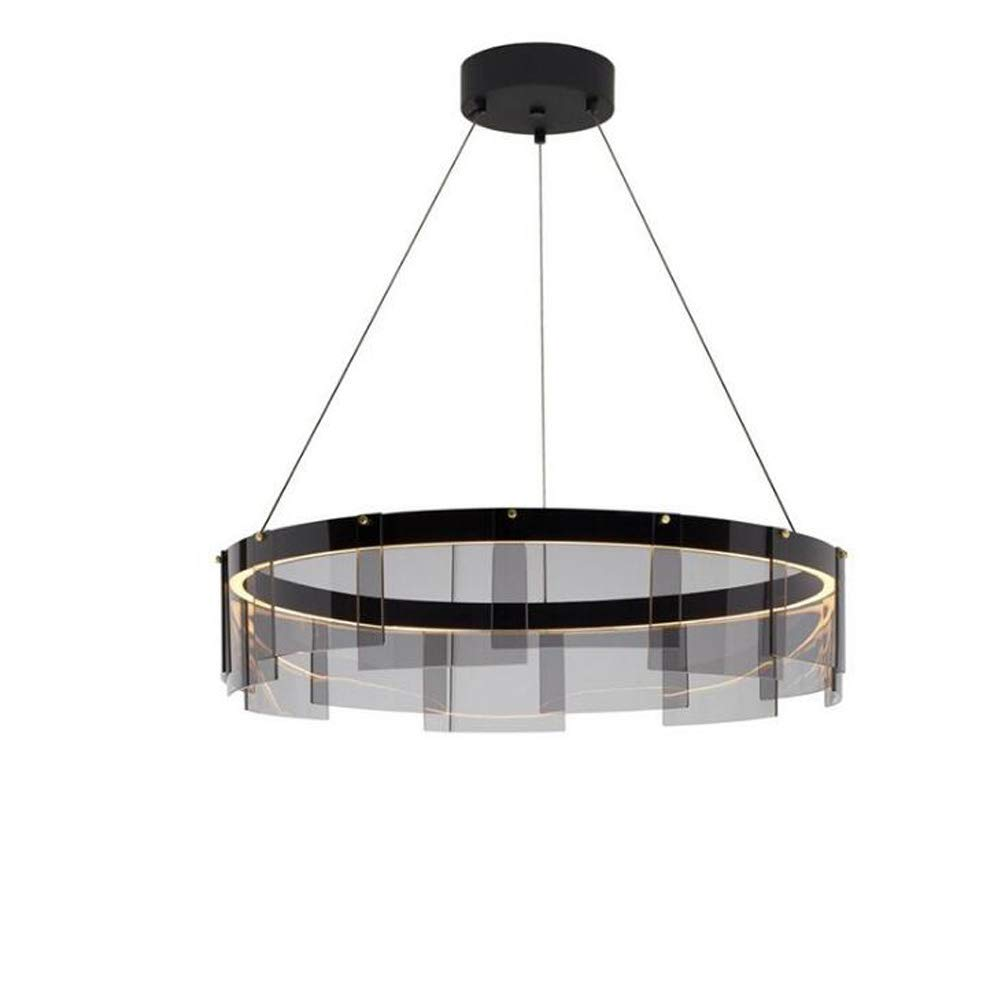 Chandelier Hanging Wire Can Adjust The Personality Of The Circular Style Suitable For Living Room Dining Room Study Room Bedroom Corridor Balcony Stairs Path Hotel Restaurant Cafe Bar Library, 8020cm