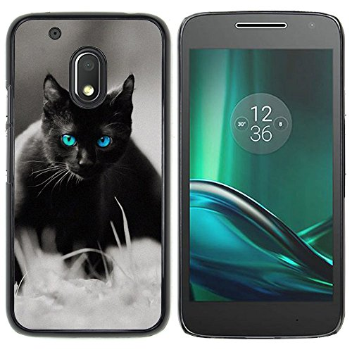 STPlus Gato en una caja Animal Carcasa Funda Rigida Para Motorola Moto G4 Play #13
