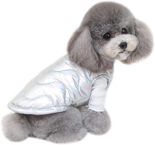 Weiweiba Azul/Plateado Color láser Mascota Perro Ropa de Gato Abrigo abrigado, Otoño Invierno Impermeable Ropa de Abrigo para Mascotas Chaqueta de Plumas para Perros pequeños y medianos Gatos: Amazon.es: Productos para mascotas