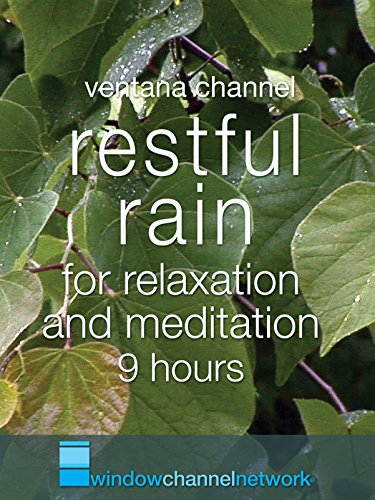 Restful Rain for relaxation and meditation 9 hours