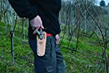Felco Leather Holster (F 910) - Tool Pouch for