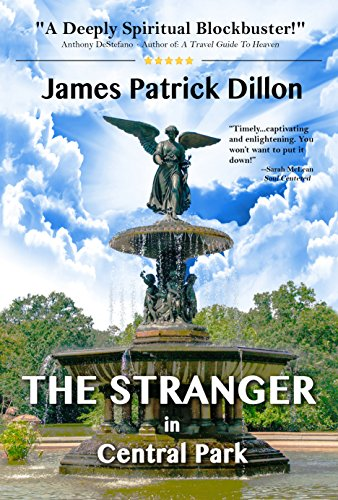 The Stranger In Central Park: A Deeply Spiritual Blockbuster Novel