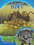 Ant, John Woodward, 1604138963