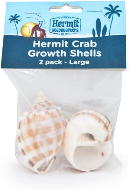 2-Pack Hermit Crab Growth Shells Large