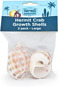 Flukers Hermit Crab Growth Shells, Large, 2-Pack