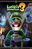 Nintendo Luigi's Mansion 3 You're in for a Fright Maxi 海报61 x 91.5 cm 多色 61 x 91, 5 cm PP34574