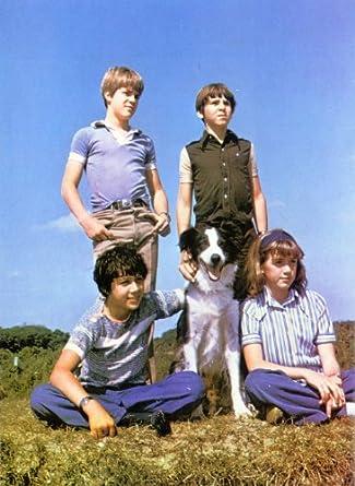 Fünf freunde 1978 download