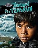 Slammed by a Tsunami!, Miriam Aronin, 1936087480