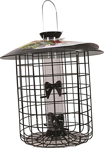 Droll Yankees Squirrel Proof Bird Feeder, Sunflower Domed Caged Bird Feeder SDC-B, 15 Inch, 1 Pound Seed Capacity, 4 Ports, Black Review