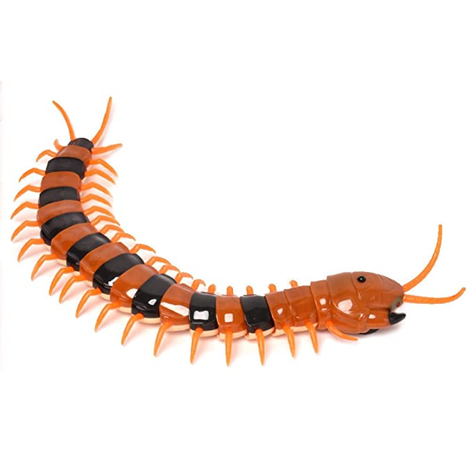 Insect Millipede Radio Remote Controlled Wireless Radio Control Toy RC