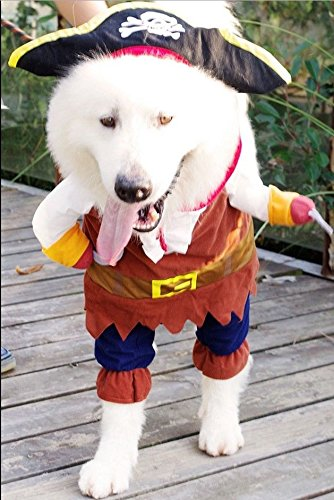 RC-Angel mascota perro ropa fiesta pirata marinero Capitán ...