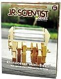 Edu-Toys Jr Scientist Rhinoceros Mini-Beest