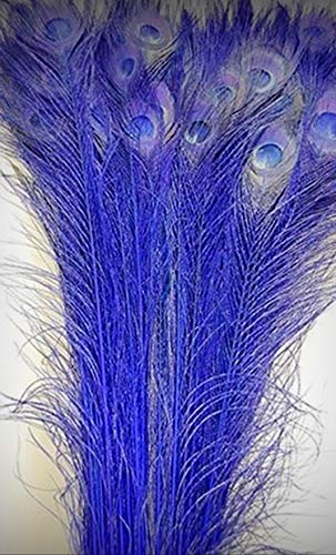 "1 Packet of 100 Pcs Bleached Peacock Crafting Feathers 35-40"" Royal Blue - for DIY Craft Costumes Hats Pens Hair Accessories Trim Mask Wedding Home Party Decorations"