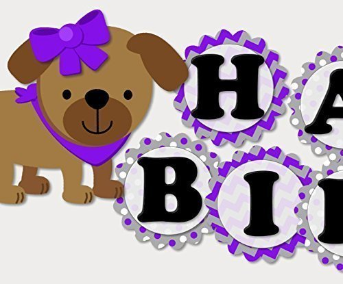 og Birthday Party or Baby Shower Decoration Supplies for Girl - Garland Bunting Banner - Purple ()