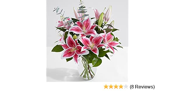 Amazon proflowers 10 count pink fragrant stargazer lilies amazon proflowers 10 count pink fragrant stargazer lilies with glass ginger vase wfree clear vase flowers grocery gourmet food mightylinksfo