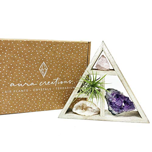 people crystals Mini Crystal + Air Plant Gift Set/Includes a 4.75