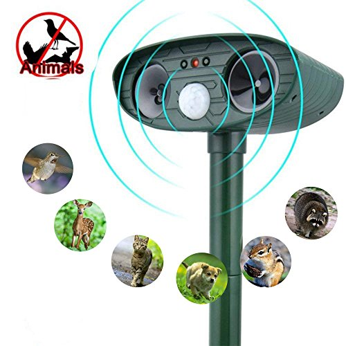 Ultrasonic Animal Repellent, Outdoor Solar Motion Activated Dog Repeller, Cat Repellant, Foxes Repellent, Birds Repellent, Skunks Repellent, Rod Repellent for Garden, Lawn, - Solar Repeller Bird
