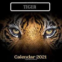 Tiger Calendar 2021