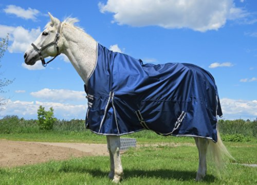 Handlers Choice 1680D Ballistic Nylon DuPont Teflon Coated Armour-Tex Horse Turn Out Blanket/Rug, Medium/77