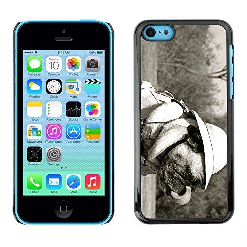 Omega Case PC Polycarbonate Cas Coque Drapeau - Apple iPhone 5C ( Funny Safari Pug Dog )
