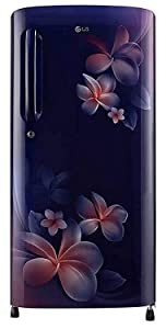 LG 190 L 4 Star Inverter Direct-Cool Single Door Refrigerator (GL-B201ABPY, Blue Plumeria)