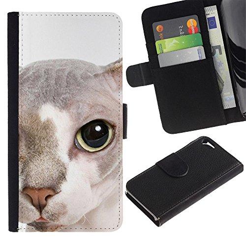 EuroCase - Apple Iphone 5 / 5S - peterbald bambino cat hairless face - Cuero PU Delgado caso cubierta Shell Armor Funda Case Cover