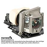 ViewSonic RLC-061 Replacement Lamp