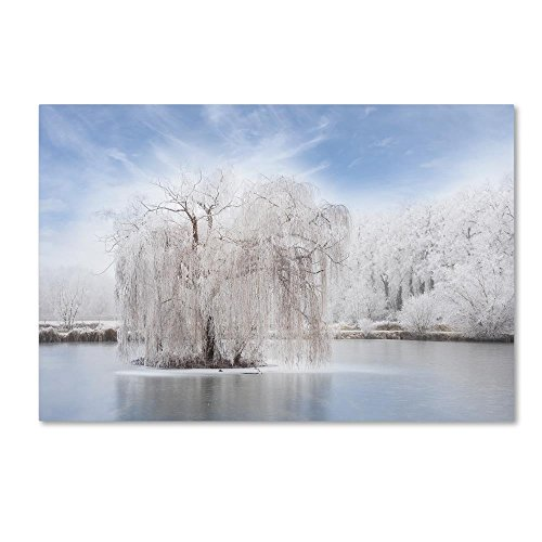 Quiet White by Philippe Sainte-Laudy, 30x47-Inch Canvas Wall Art