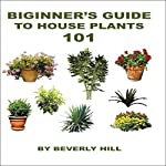 Beginner's Guide to Houseplants 101 | Beverly Hill