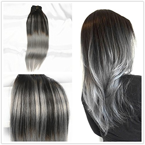 Stella Reina Sombre Silver Balayage Clips In Hair