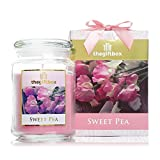 Sweet Pea Large Scented Candle Gift. Containing a Large Wax Candle in an Uplifting Sweet Pea Aroma, Complete with Gift Box and Luxury Ribbon. Scented Candles Make Ultimate Gifts for Women, Great Gifts for Her or Perfect Women's Gifts.( Sweet Pea)
