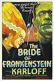 bride of FRANKENSTEIN campy classic MOVIE POSTER boris KARLOFF 24X36 bold (reproduction, not an original)