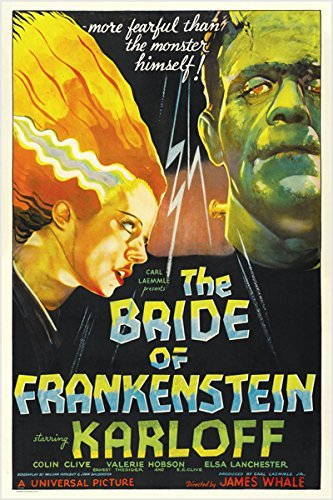 Frankenstein Movie Poster (bride of FRANKENSTEIN campy classic MOVIE POSTER boris KARLOFF 24X36 bold (reproduction, not an original))