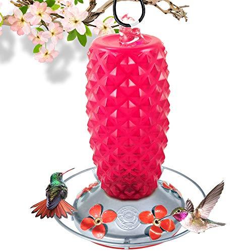 - Grateful Gnome - Hummingbird Feeder - Hand Blown Glass - Renaissance Ruby