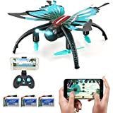 Beyondsky JJRC H42 Foldable RC Drone Butterfly-like Aerial Photography 3D LED Flips and Rolls Wifi Selfie Quadcopter Drone, 3 Batteries, with HD Camera (H42 with 3 Batteries)