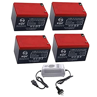 TDPRO Pack of Four 12V 14Ah 6-DZM-12 AGM Motorcycle Battery & Charger for ATV Scooter Go Kart Golf Cart