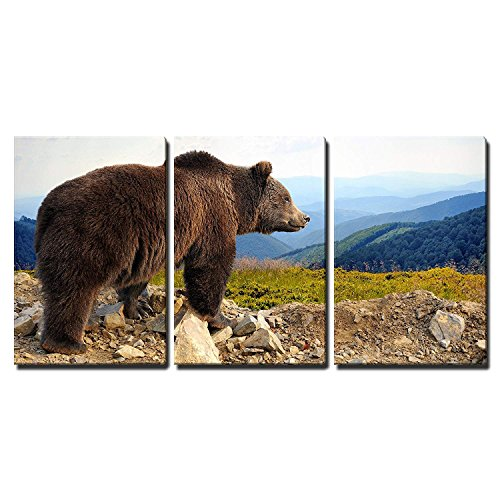 wall26 - 3 Piece Canvas Wall Art - Big Brown Bear (Ursus Arctos) in The Mountain - Modern Home Decor Stretched and Framed Ready to Hang - 16
