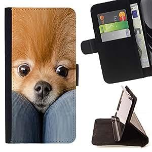 Momo Phone Case / Flip Funda de Cuero Case Cover - Pomerania perro de mascota Oro lindo Piel; - HTC One M8