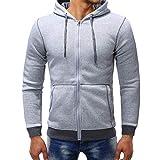 PASATO Men's Autumn Winter New! Casual Zipper Long Sleeve Fleece Hoodie Top Blouse Coat Clothes Pure Color Polo(Gray, XL)
