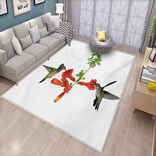 Hummingbirds Bath Mat 3D Digital Printing Mat Two Hummingbirds Sipping Nectar from a Trumpet Vine Blossoms Summertime Door Mat Increase 6