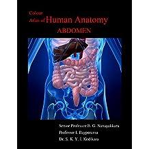 Colour Atlas of Human Anatomy - Abdomen