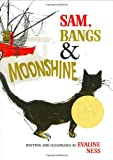 Sam, Bangs and Moonshine, Evaline Ness, 0805003142