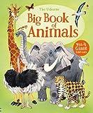 Big Book of Animals (Big Books)