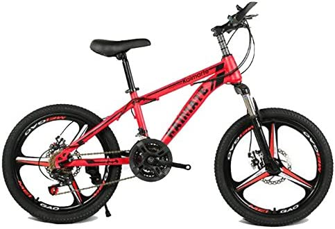 HUALQ Bicicleta 20 Pulgadas Bicicleta de montaña 21 Velocidad 24 ...