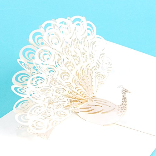 Paper Spiritz Peacock 3D Pop up Greeting Card Postcard Showing Its Tail Matching Envelope Laser Cut Handmade Women's Day Mom Happy Birthday Post Card …