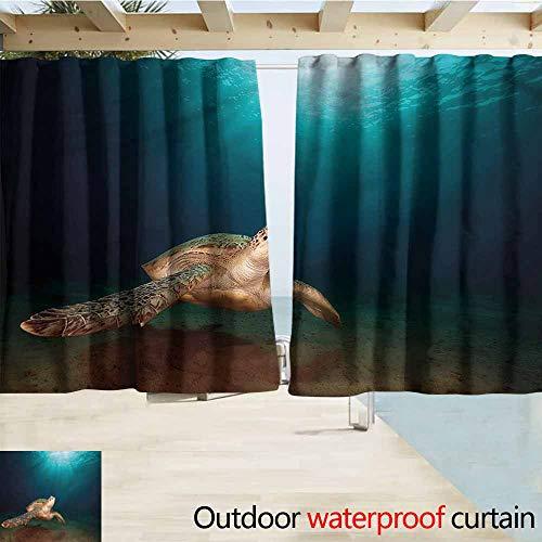 MaryMunger Sliding Door Curtain Turtle Green Turtle Sunbeam Darkening Thermal Insulated Blackout W55x63L Inches