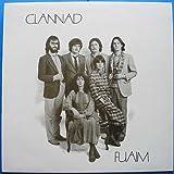 Fuaim [Vinyl LP]