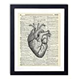 Anatomical Heart Upcycled Wall Art Vintage Dictionary Art Print 8x10 inches / 20.32 x 25.4 cm Unframed
