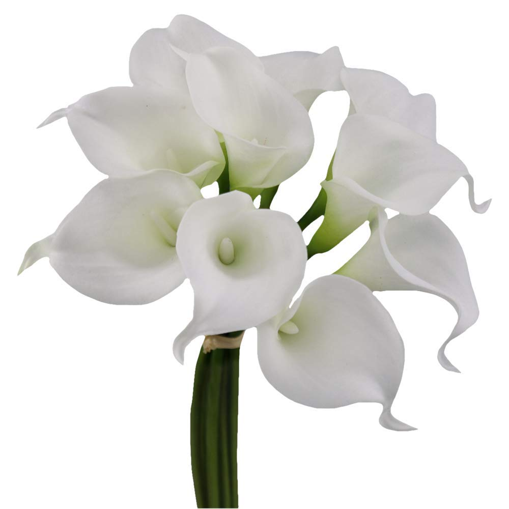 Angel Isabella 10pc Set Real Touch Calla Lily-Fragrance Supreme Quality Keepsake Artificial Flower by Angel Isabella